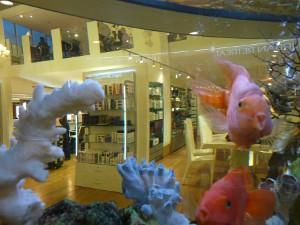 MediSpa fish at Urban Retreat