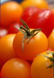 tomatoes - rich in lycopene