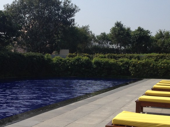 Yellow loungers around the blue pool at The Oberoi Gurgaon